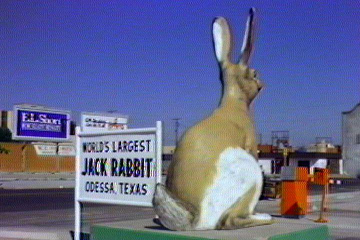 4588_worlds-largest-jack-rabbit.jpg